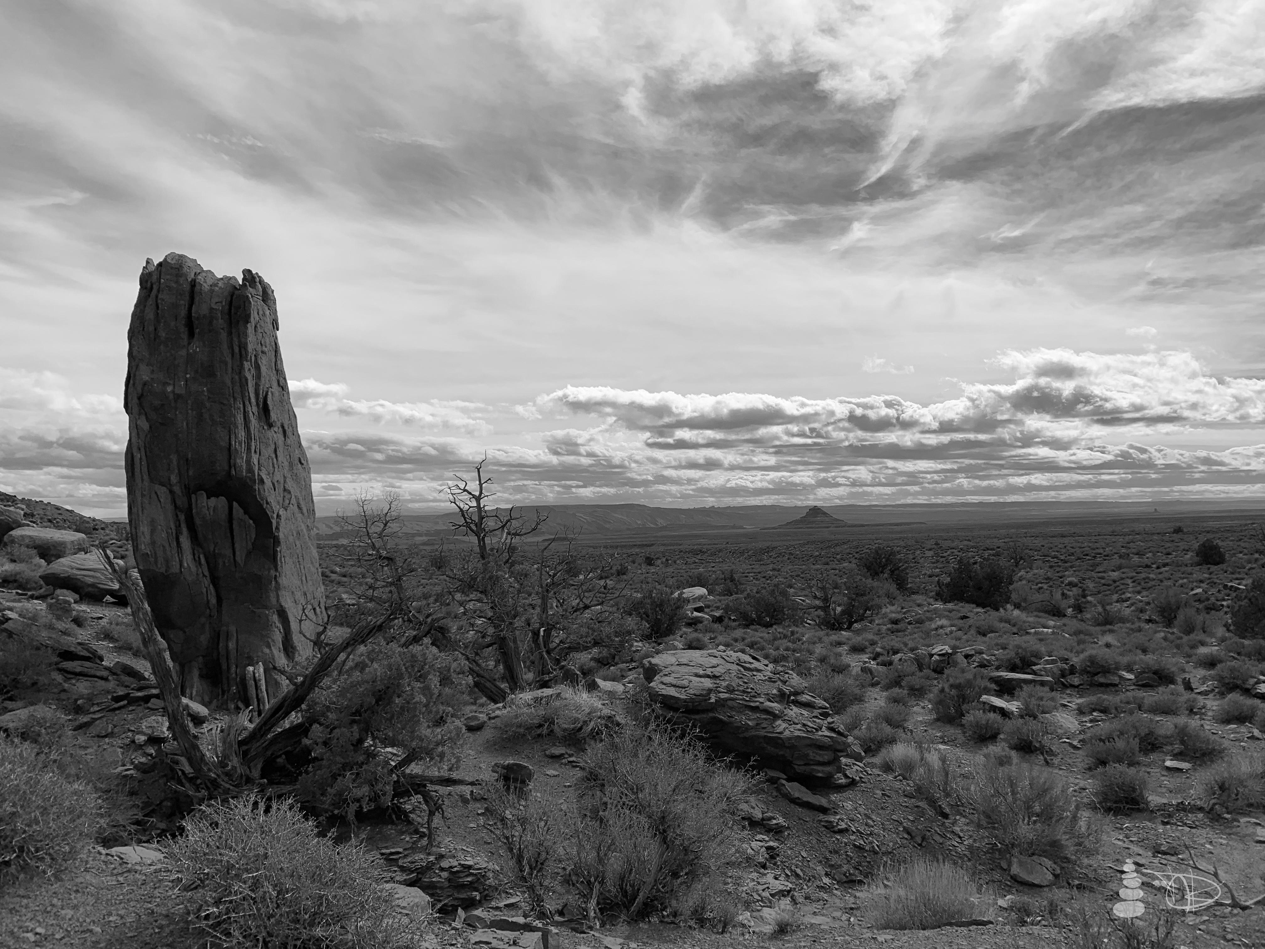 Western Shadows Gallery | Desert Mon