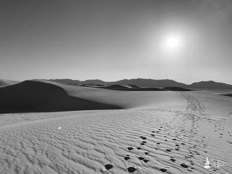 Western Shadows Gallery | Footprints in the Sand