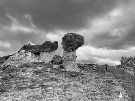 Western Shadows Gallery | Mushroom Rocks