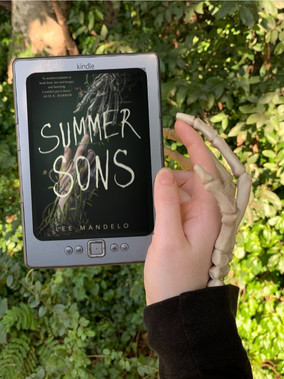 Summer Sons by: Lee Mandelo Book Review