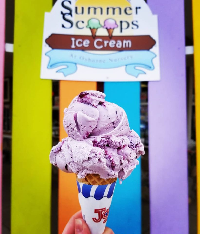 Summer Scoops Ice Cream