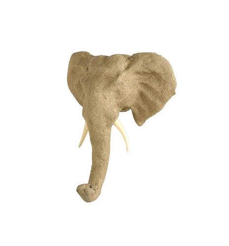 ראשי חיות - פיל קטן