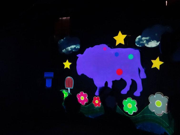 vjdeliria-mapping buffalo 2.jpg