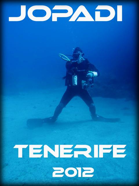 TENERIFE - Iles Canaries