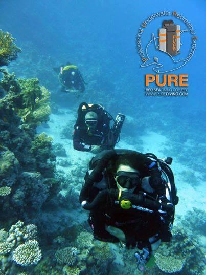 Pure - Sharm - Egypte