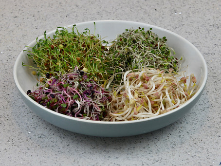 Why Sprouting is Healthy?