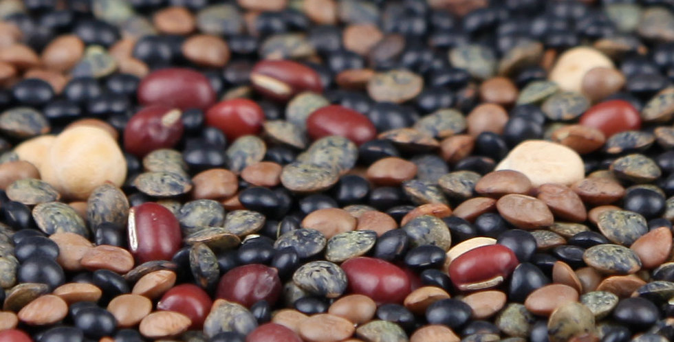 Organic Protein Boost Seeds