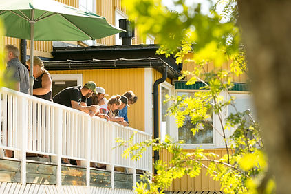 Konferens Åre Fjällsätra.jpg