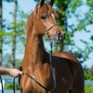 Jackson 1 year Suzanne 1.jpg
