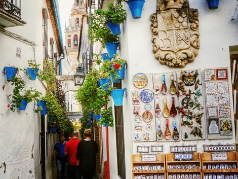 Fiesta de los Patios w Kordobie