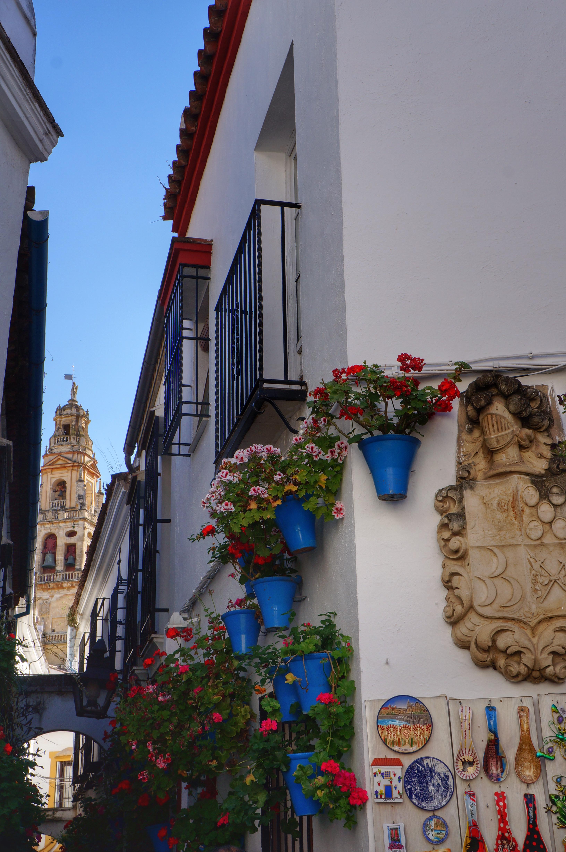 Wycieczki po Andaluzji - Kordoba