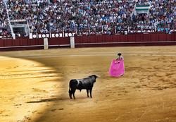 Przewodnik Malaga - Feria de Malaga