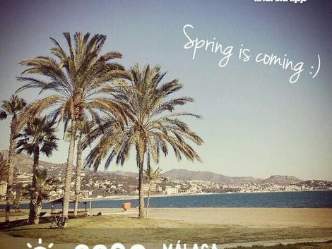 Wiosna w Maladze :)
