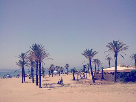 Plaze Marbella
