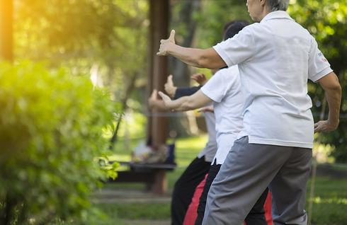 Taijiquan,Tai chi chinese dance in the g