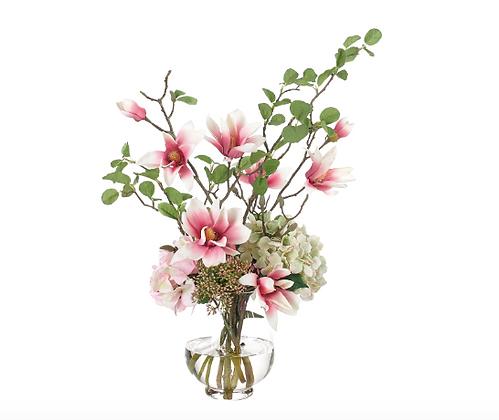 Magnolia Hydrangea