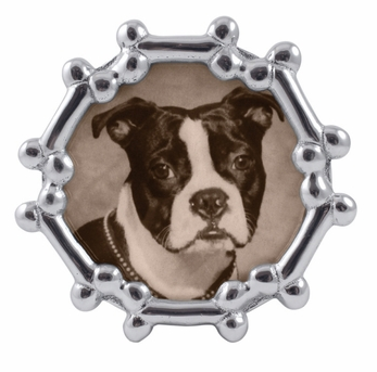 Round dog bone frame