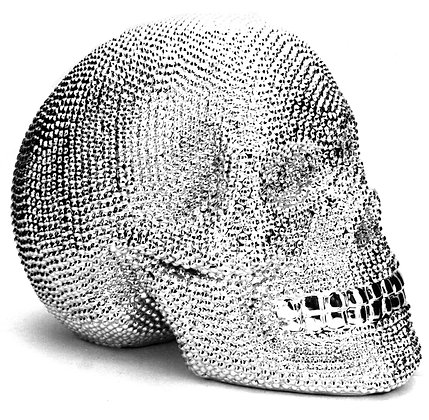 Electroplated Skull