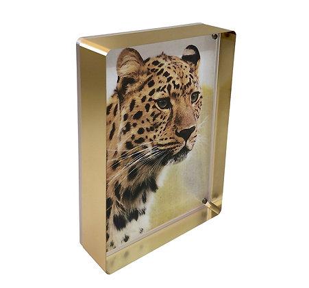 Gold Prestige Magnetic Frame 5 x 7