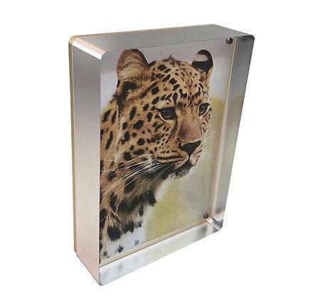Silver Prestige Magnetic Frame 4 x6