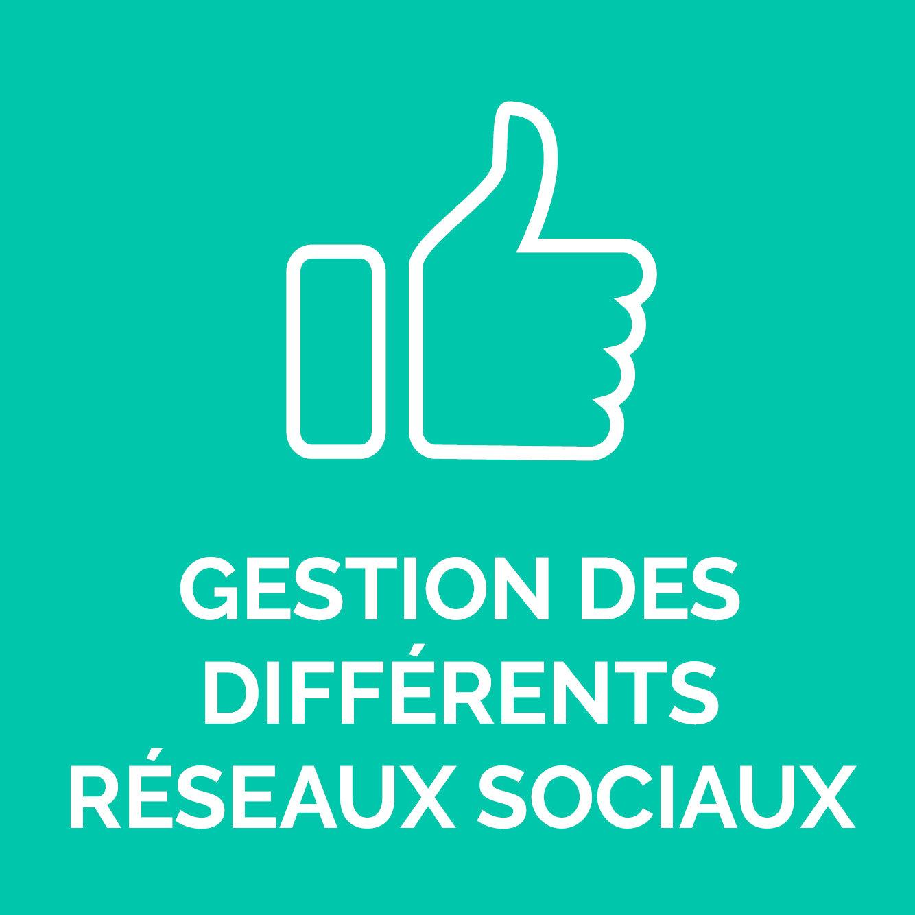 GESTION DES DIFFERENTS RESEAUX SOCIAUX