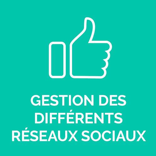 GESTION DES DIFFÉRENTS RÉSEAUX SOCIAUX