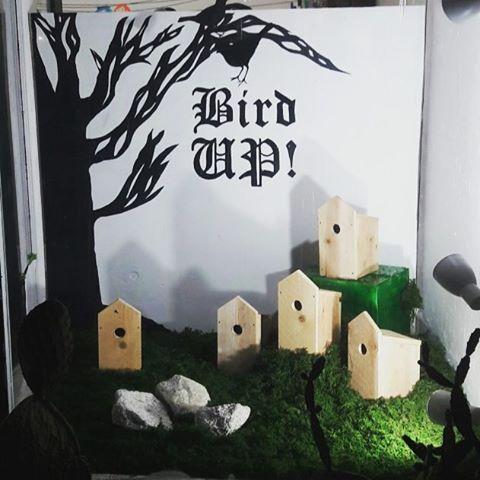 Birdup show tree window