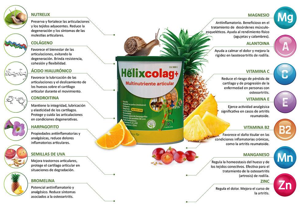 HelixColag descriptivo_Mesa de trabajo 1
