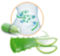 Greenergy Regularidad D-Tox Easy-Digest GustoPharma Consumer Health