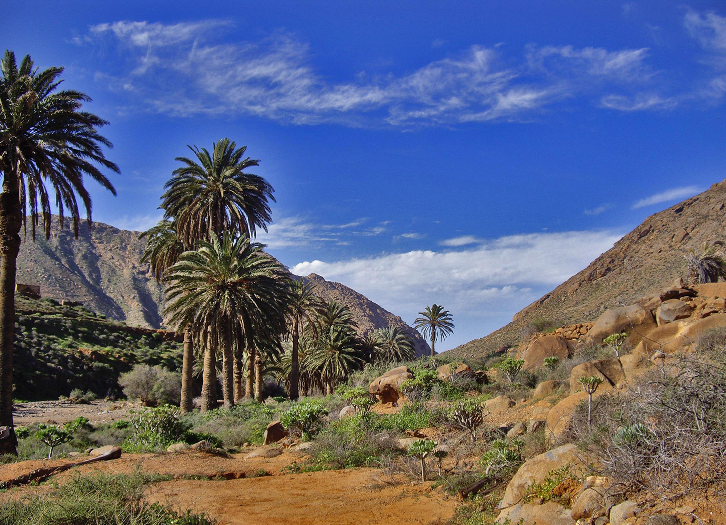 Fuerteventura Trekking, La Peñita