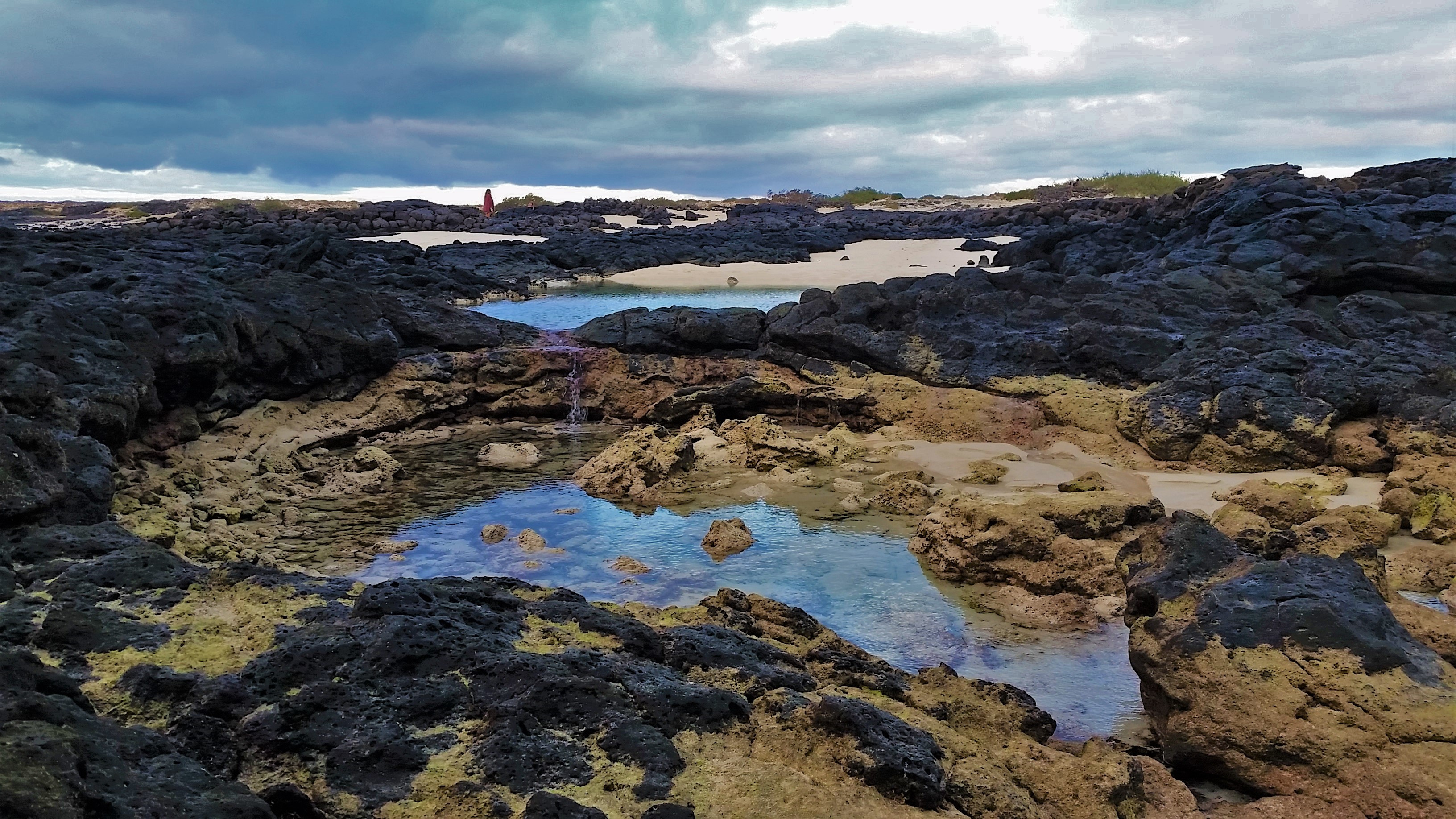 The low tides in LOS LAGOS (El Cotillo)