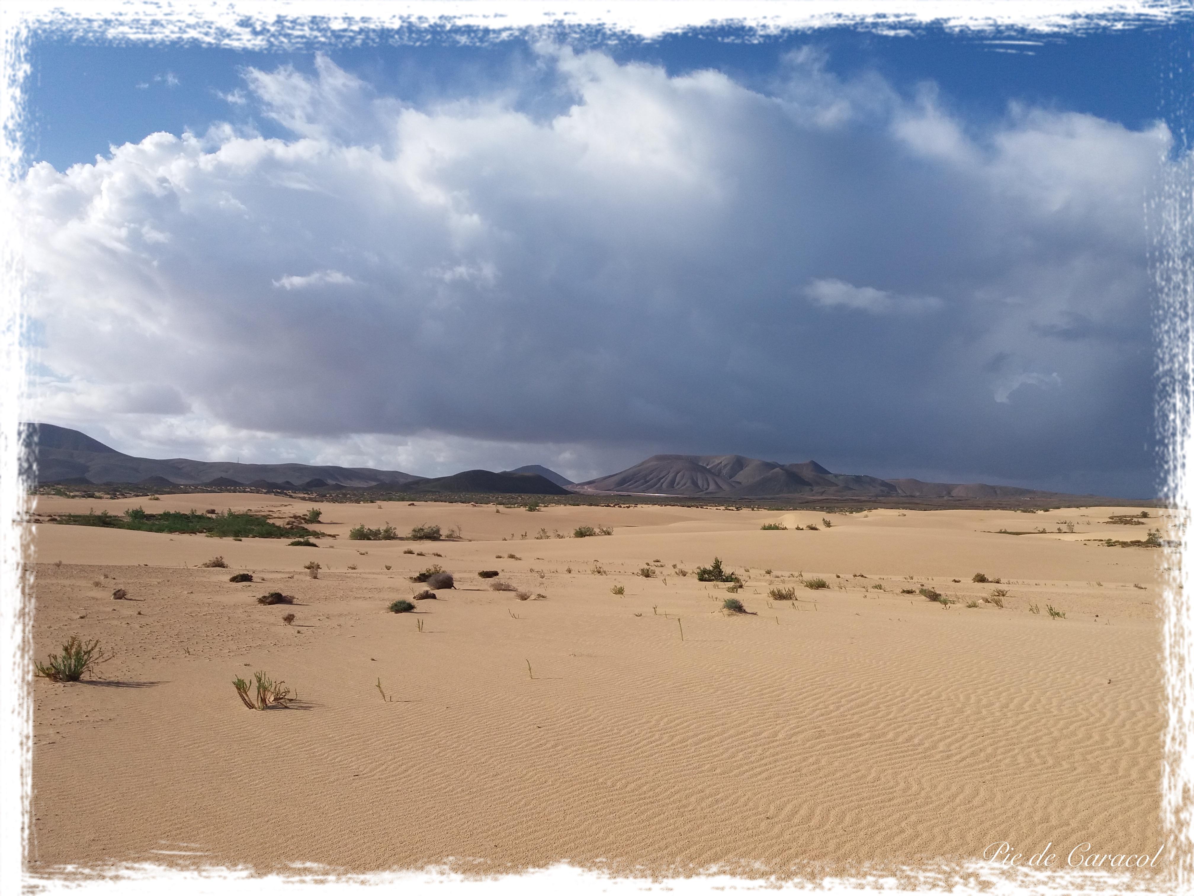 Parque Natural Las Dunas de Corralejo, Fuerteventura