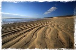 Beach, Fuerteventura, Canary Islands