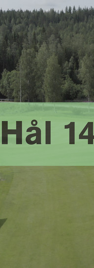 Hål 14.jpg