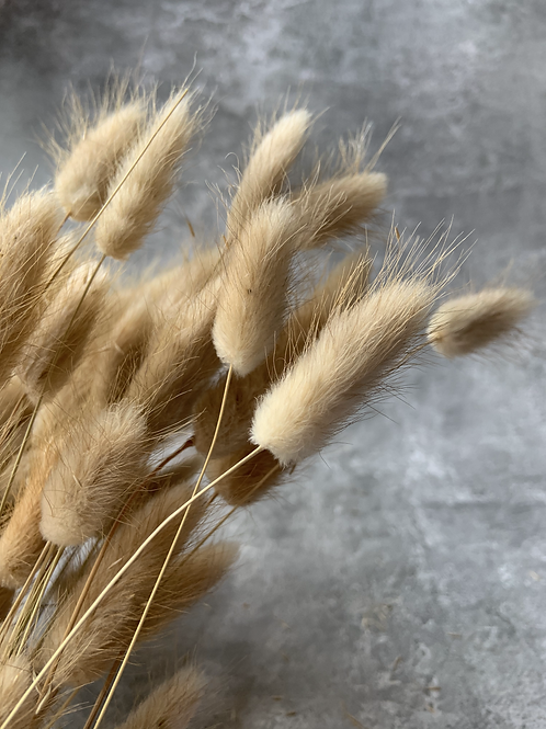 Natural Bunny Tails