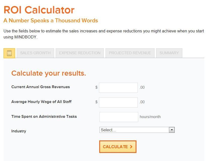 Marketing ROI Calculator Example