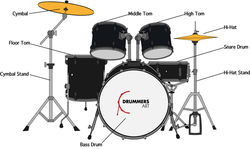 Drum Set Anatomy Drummers Art