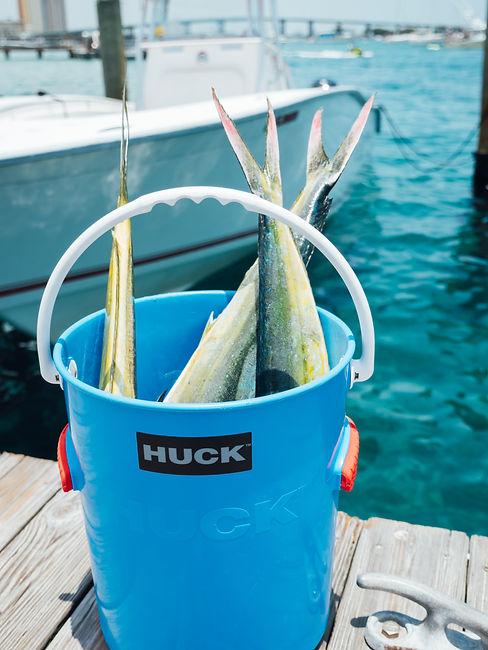 01 - Huck (1 of 1)-4.jpg