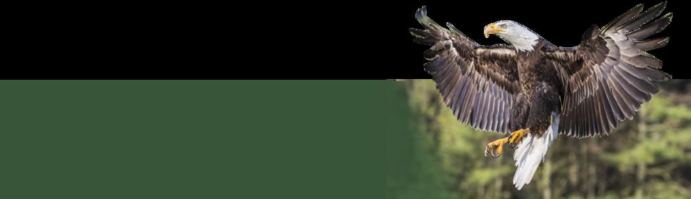 aviary_header.png
