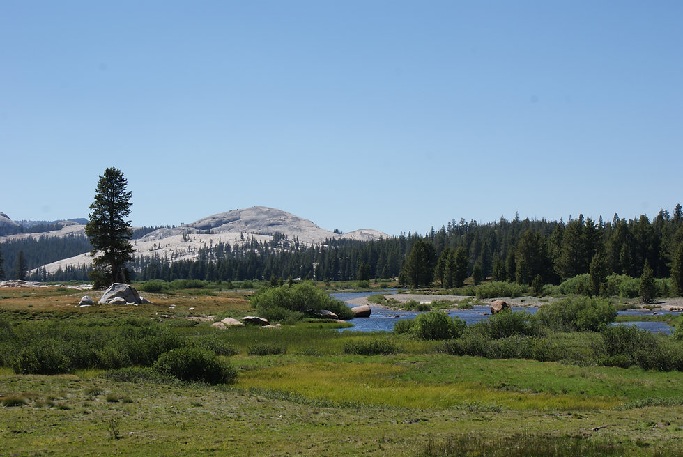 Tuolumne River Yosemite.jpg