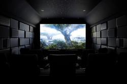 cinema12971