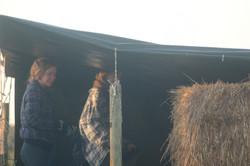 Hooibalen, netten vullen