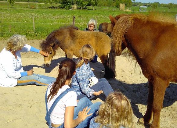 Oefengroep Vertalen voor dieren