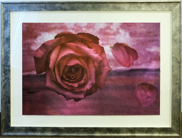 Falling Petals Color fusion lithograph 27 x 40 1/2 in. 40 x 53 1/2 in. framed 63/90 Hand-signed and numbered