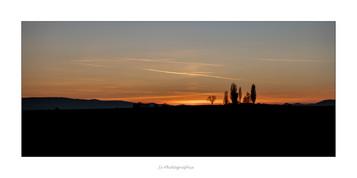 paysage contre jour .jpg