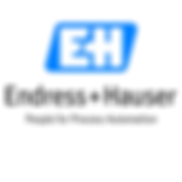 Soulworxx Referenz-Endress+Hauser Flowtec Logo
