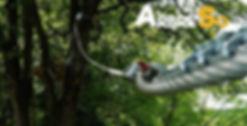 Parcours aventure du viaduc de l'isle jourdain (vienne 86)