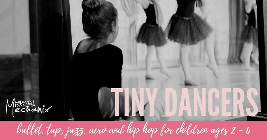 TINY DANCER HEADER FOR WEB.png