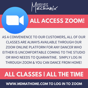 ALL ACCESS ZOOM