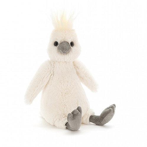 Bashful Cockatoo